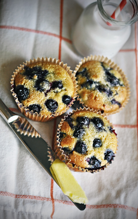 Coconut Flour Blueberry Muffins | The Wholesome Home